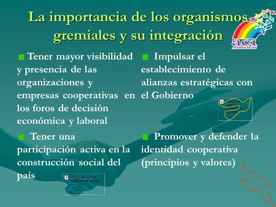La importancia de los organismos gremiales y su integración