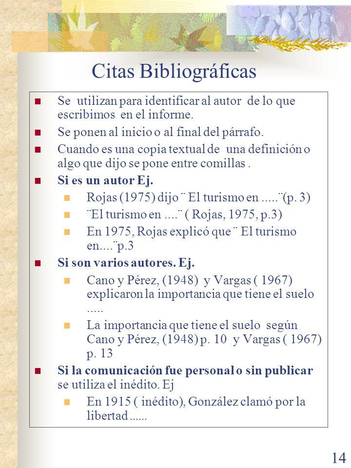 Citas Bibliográficas Se utilizan para identificar al autor de lo que escribimos en el informe. Se ponen al inicio o al final del párrafo.