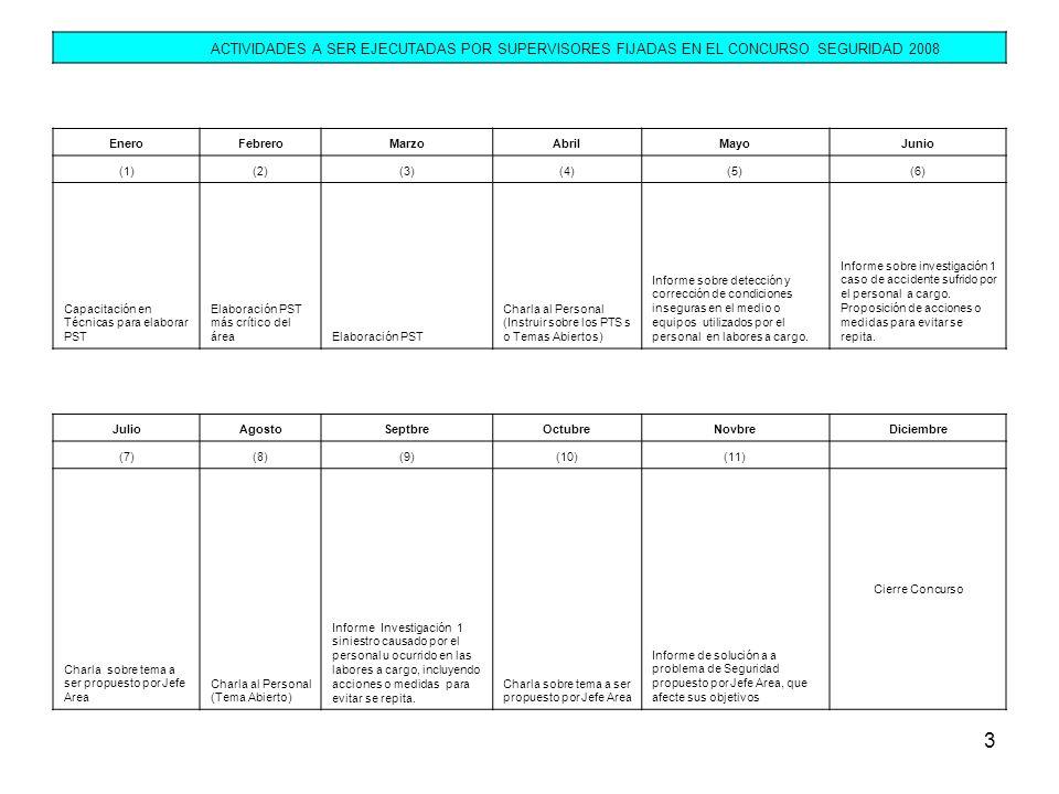 ACTIVIDADES A SER EJECUTADAS POR SUPERVISORES FIJADAS EN EL CONCURSO SEGURIDAD 2008. Enero. Febrero.