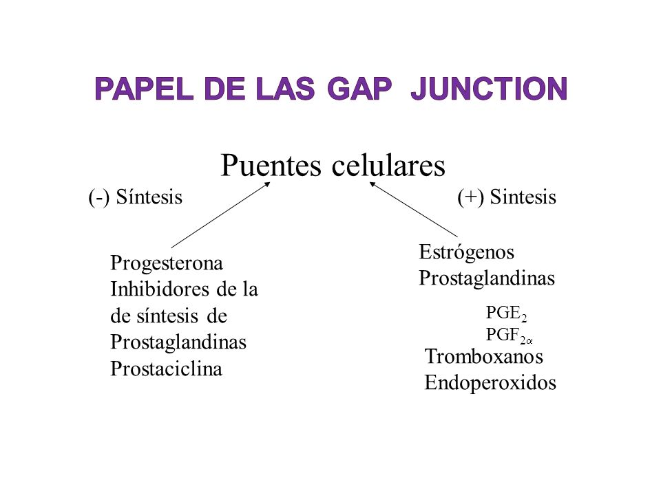 PAPEL DE LAS Gap Junction