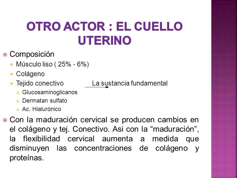 Otro actor : el Cuello Uterino