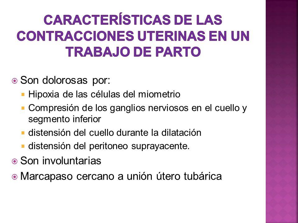 Características de las Contracciones uterinas en un trabajo de parto