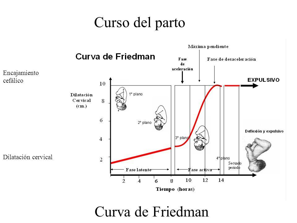 Curso del parto Curva de Friedman Encajamiento cefálico
