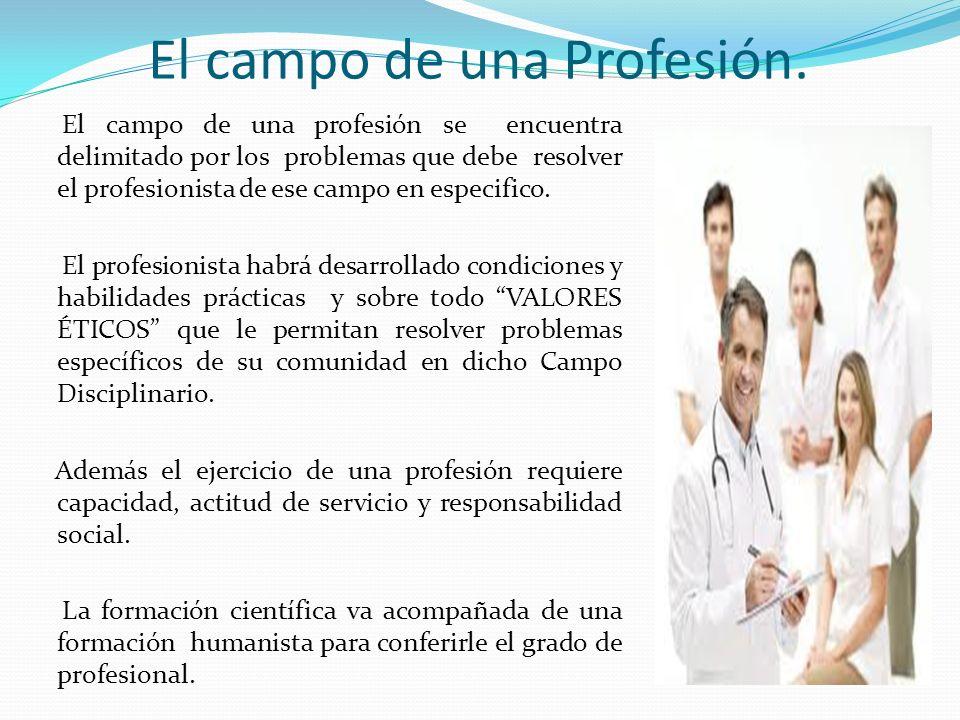 El campo de una Profesión.