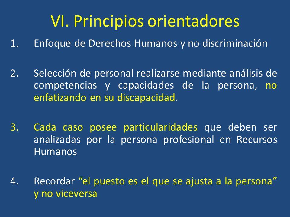 VI. Principios orientadores