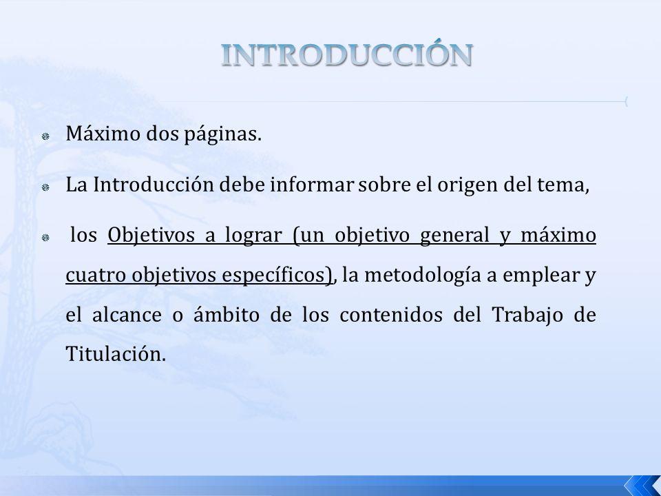 INTRODUCCIÓN Máximo dos páginas.