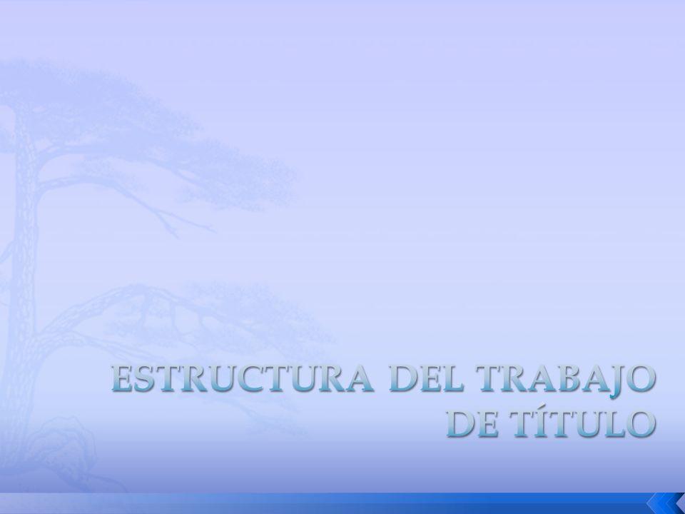ESTRUCTURA DEL TRABAJO DE TÍTULO
