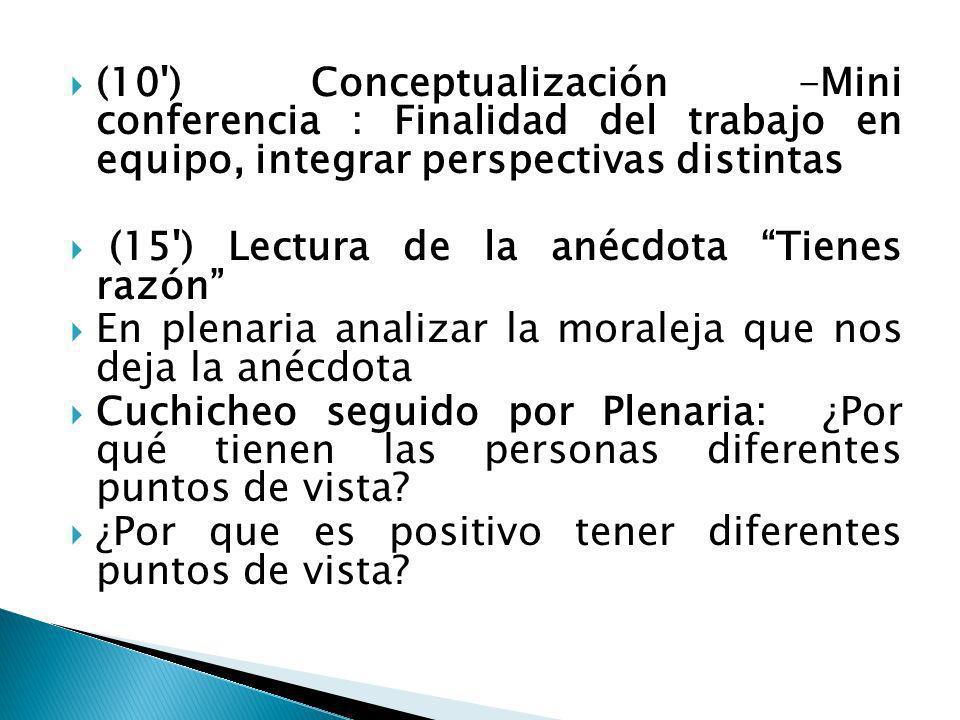 (10 ) Conceptualización -Mini conferencia : Finalidad del trabajo en equipo, integrar perspectivas distintas