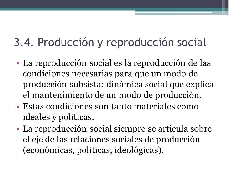 3.4. Producción y reproducción social