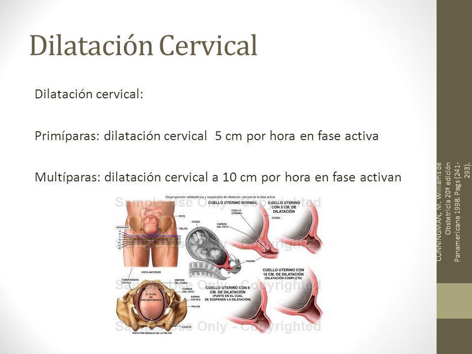 Dilatación Cervical