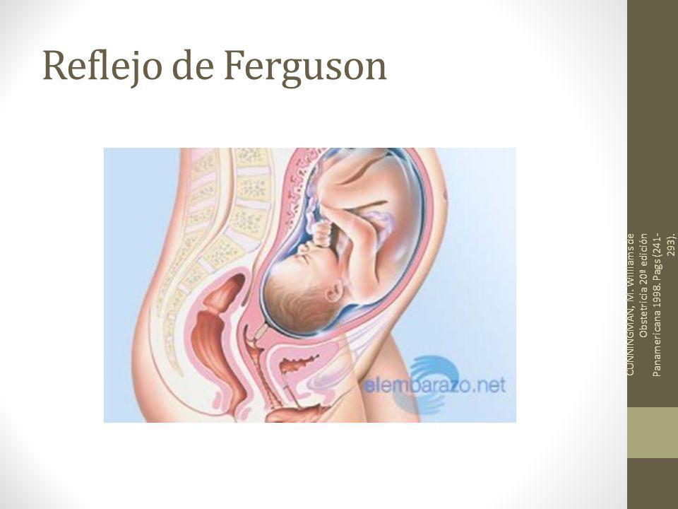 Reflejo de Ferguson CUNNINGMAN, M. Williams de Obstetricia 20ª edición Panamericana 1998.