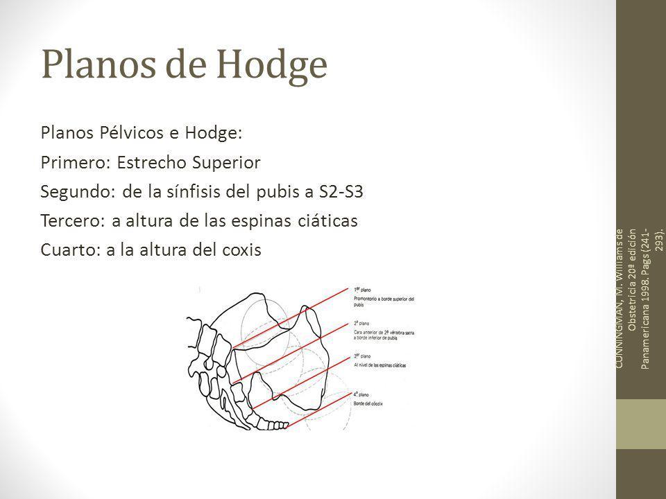 Planos de Hodge Planos Pélvicos e Hodge: Primero: Estrecho Superior