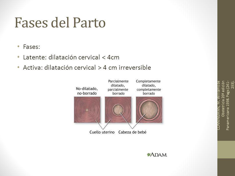 Fases del Parto Fases: Latente: dilatación cervical < 4cm