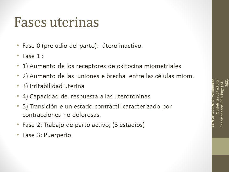 Fases uterinas Fase 0 (preludio del parto): útero inactivo. Fase 1 :