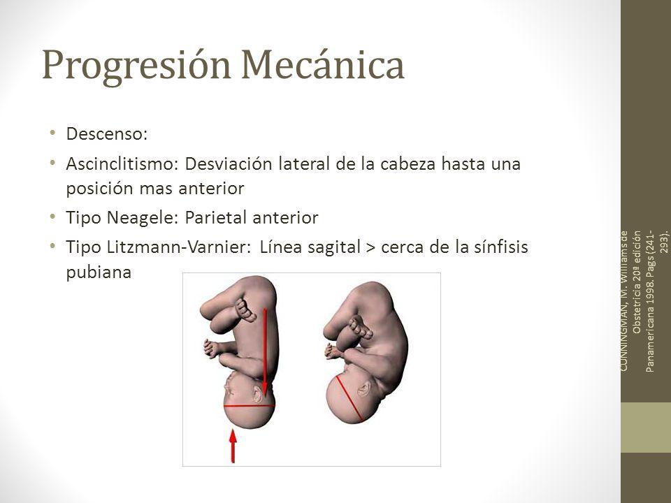 Progresión Mecánica Descenso: