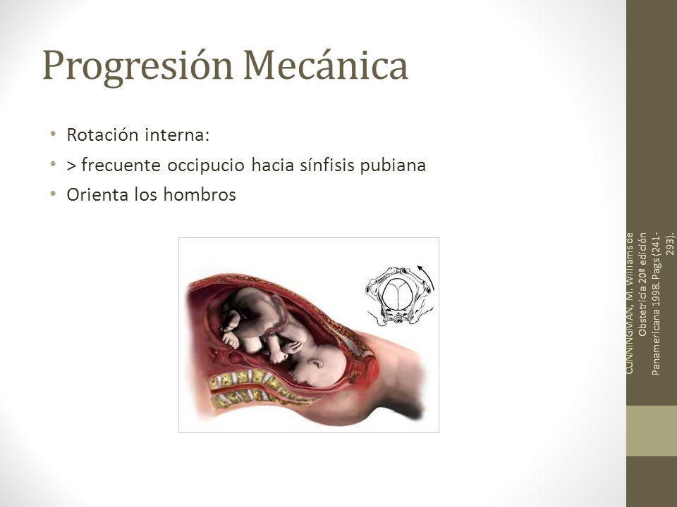Progresión Mecánica Rotación interna: