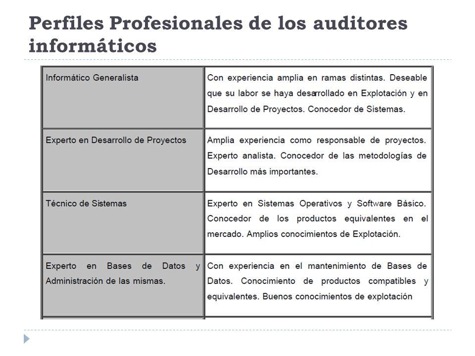 Perfiles Profesionales de los auditores informáticos