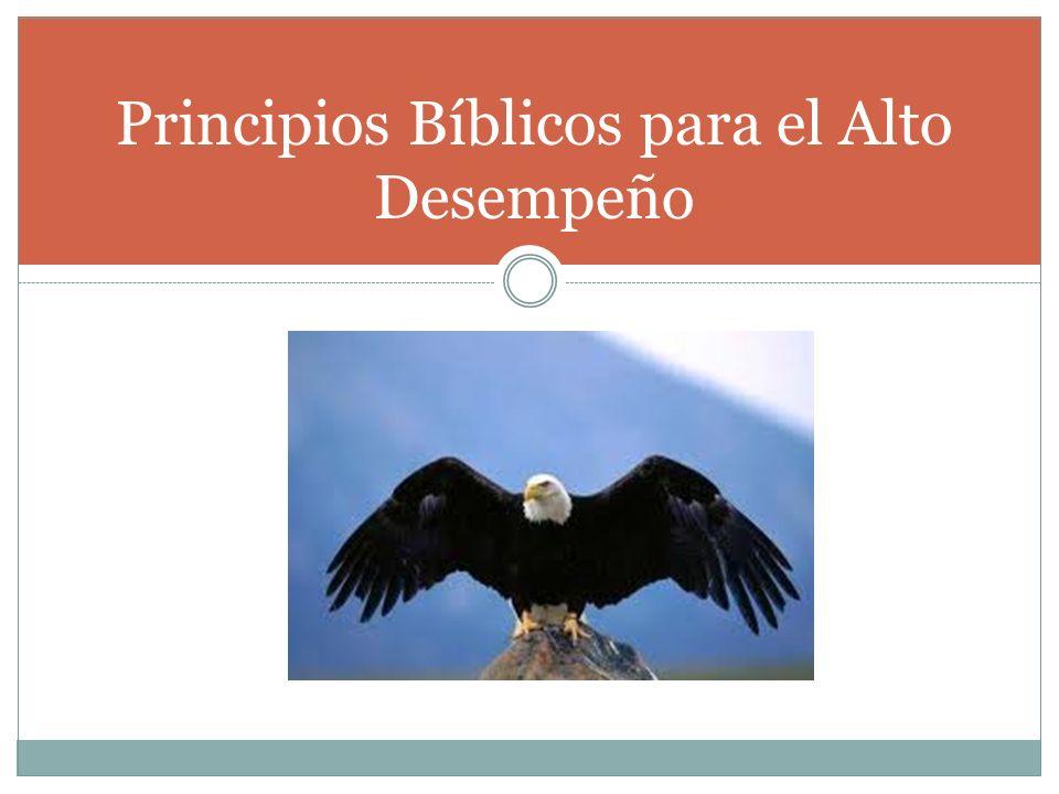 Principios Bíblicos para el Alto Desempeño