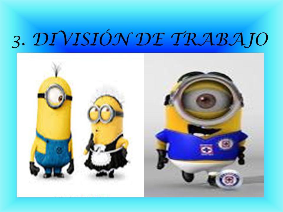 3. DIVISIÓN DE TRABAJO