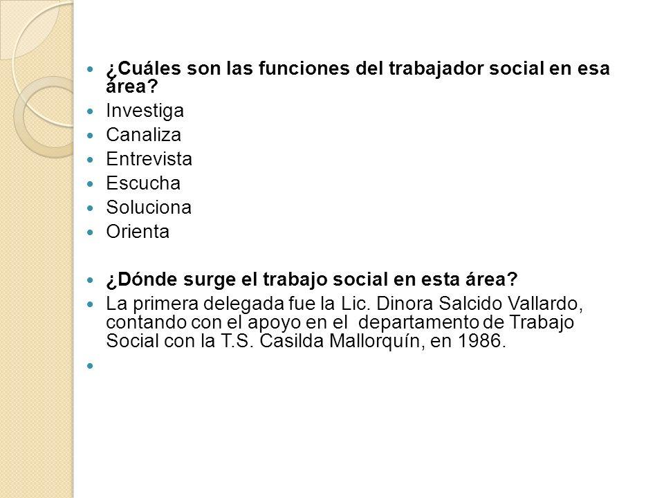 ¿Cuáles son las funciones del trabajador social en esa área