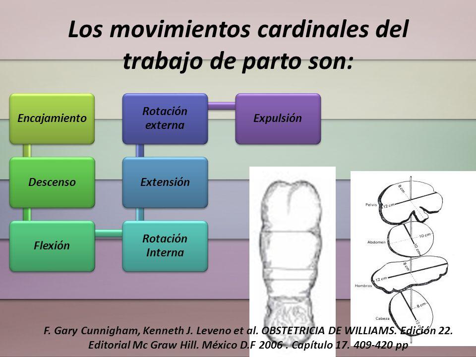 Los movimientos cardinales del trabajo de parto son: