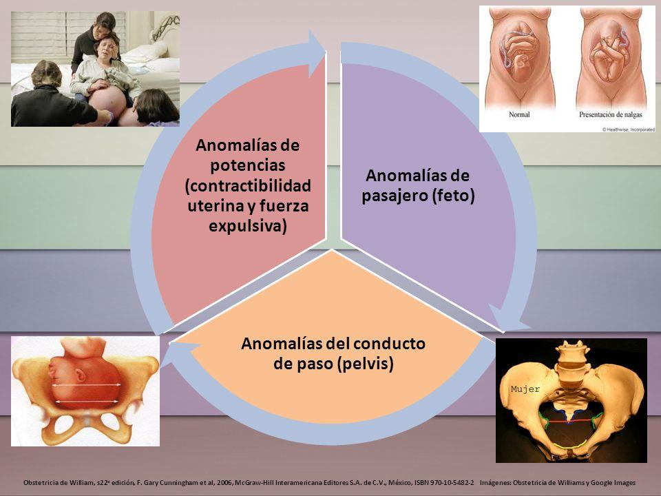 Anomalías de pasajero (feto)
