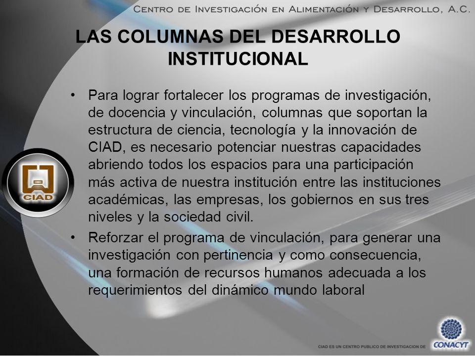 LAS COLUMNAS DEL DESARROLLO INSTITUCIONAL