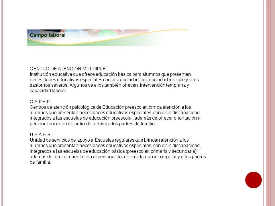 CENTRO DE ATENCIÓN MÚLTIIPLE:
