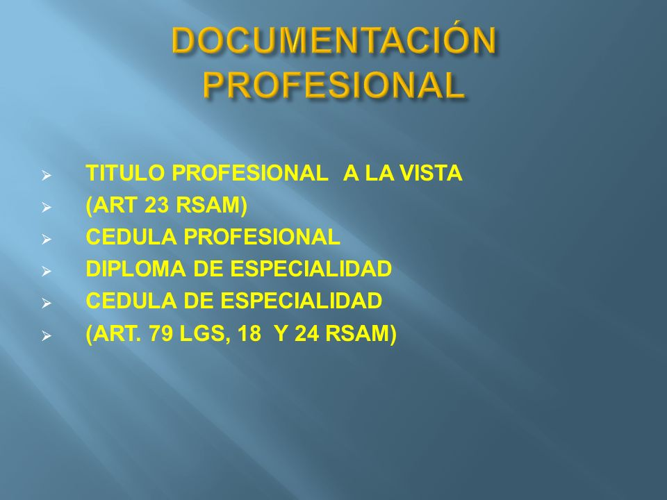 DOCUMENTACIÓN PROFESIONAL