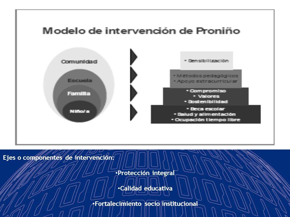 Fortalecimiento socio institucional