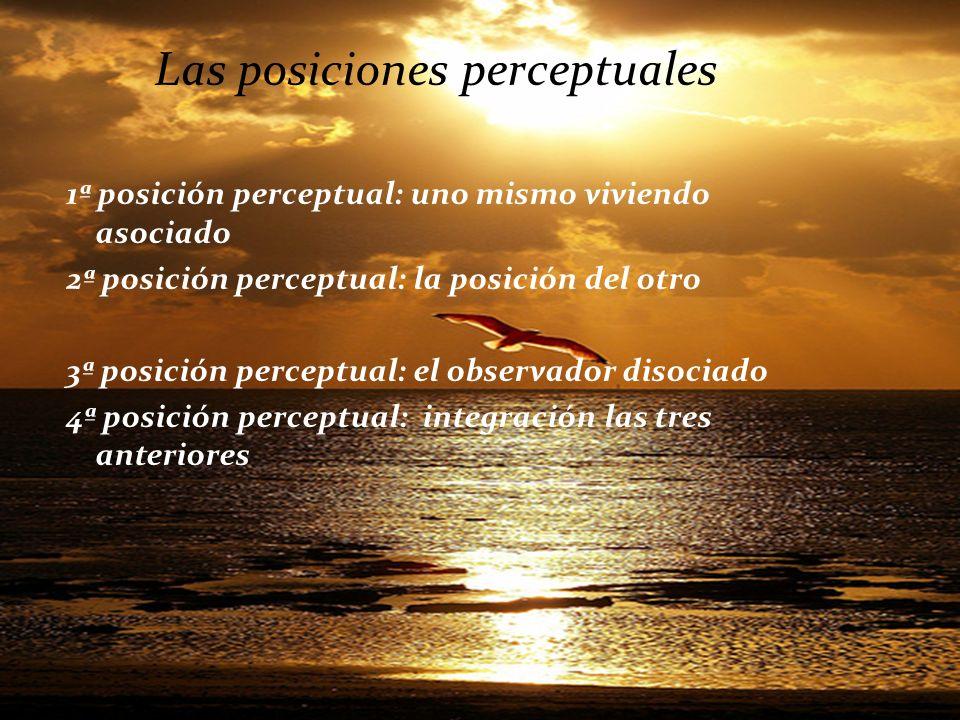 Las posiciones perceptuales