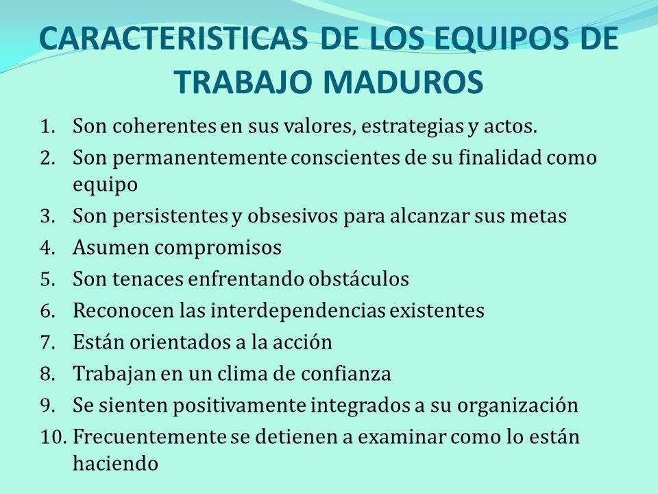 CARACTERISTICAS DE LOS EQUIPOS DE TRABAJO MADUROS