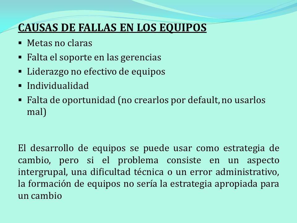 CAUSAS DE FALLAS EN LOS EQUIPOS