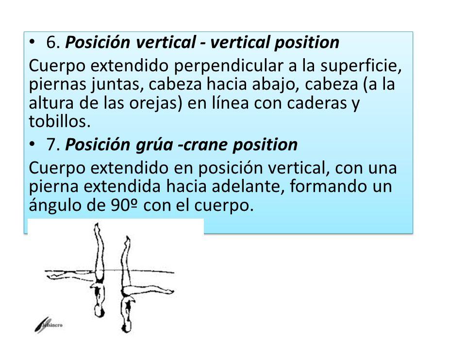 6. Posición vertical - vertical position