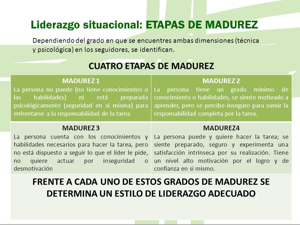 CUATRO ETAPAS DE MADUREZ