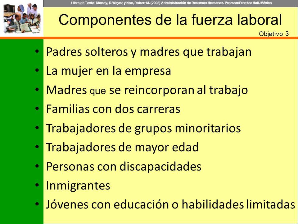 Componentes de la fuerza laboral