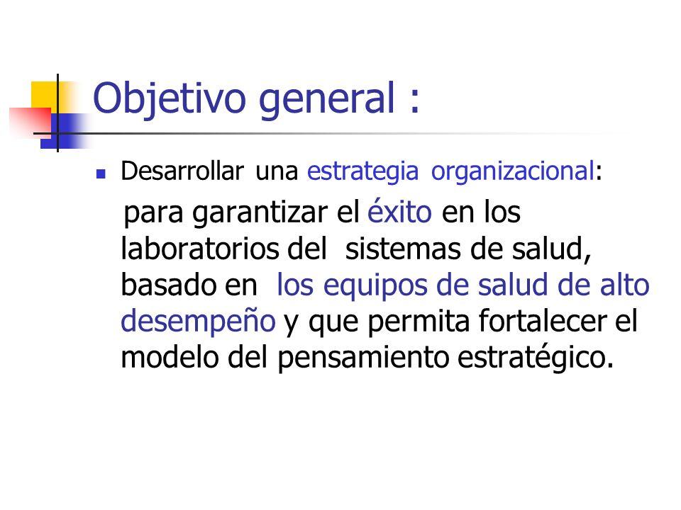 Objetivo general : Desarrollar una estrategia organizacional: