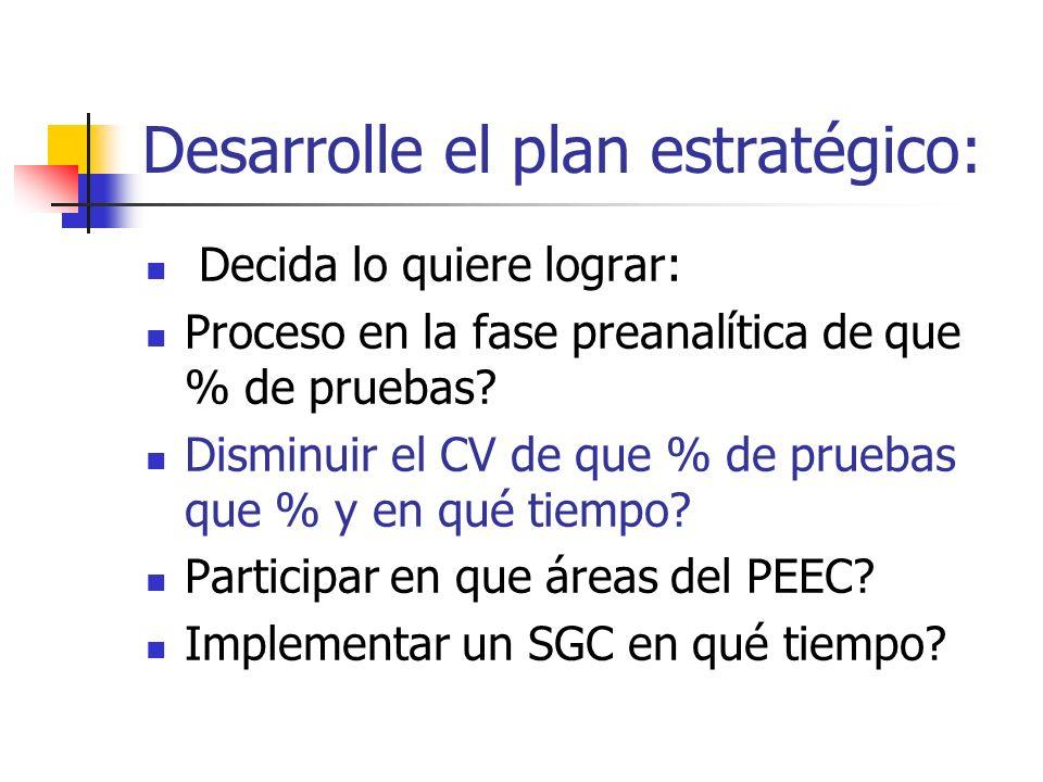 Desarrolle el plan estratégico: