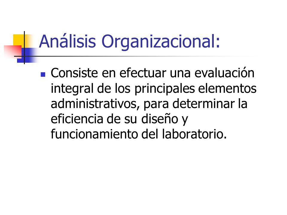 Análisis Organizacional: