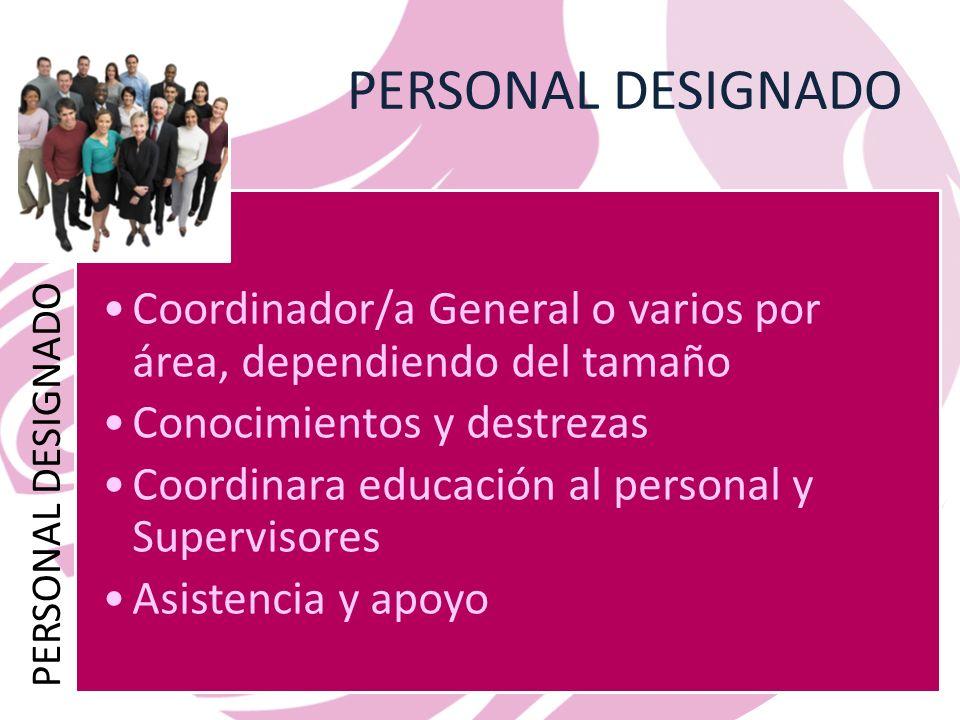 PERSONAL DESIGNADO PERSONAL DESIGNADO. Coordinador/a General o varios por área, dependiendo del tamaño.