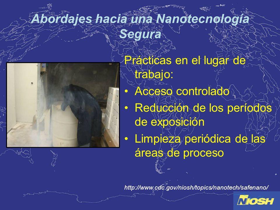 Abordajes hacia una Nanotecnología Segura