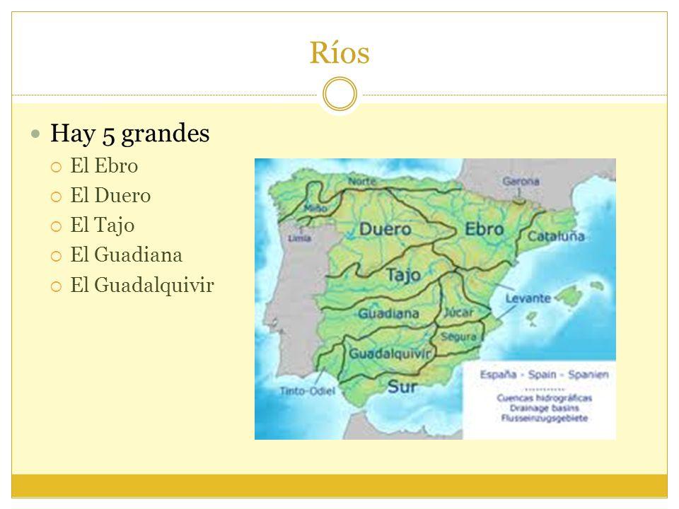 Ríos Hay 5 grandes El Ebro El Duero El Tajo El Guadiana