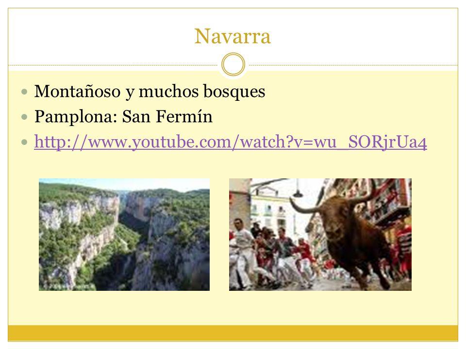 Navarra Montañoso y muchos bosques Pamplona: San Fermín
