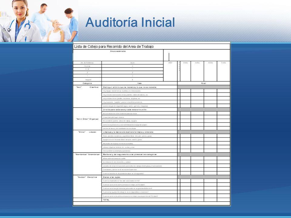 Auditoría Inicial