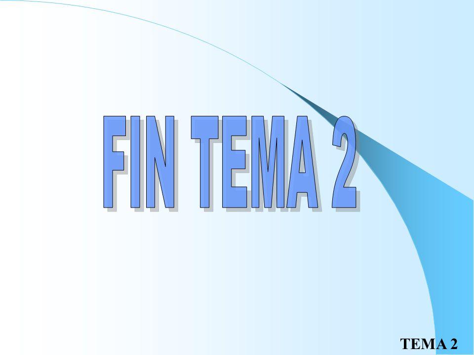 FIN TEMA 2