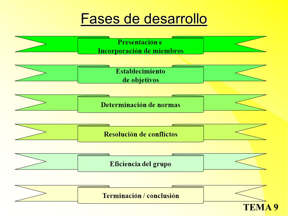 Fases de desarrollo Presentación e Incorporación de miembros