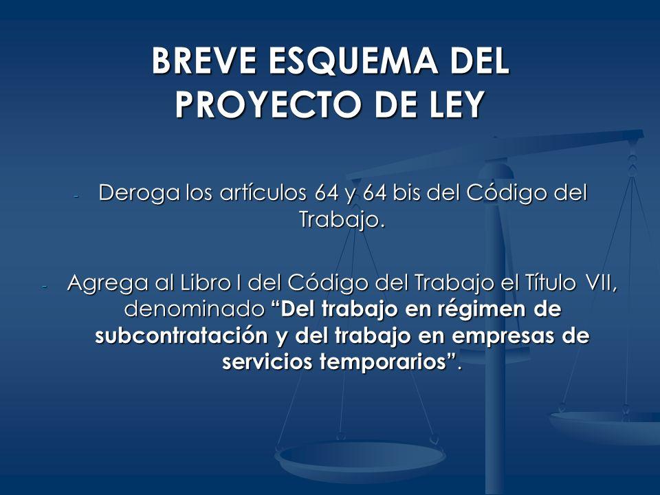 BREVE ESQUEMA DEL PROYECTO DE LEY