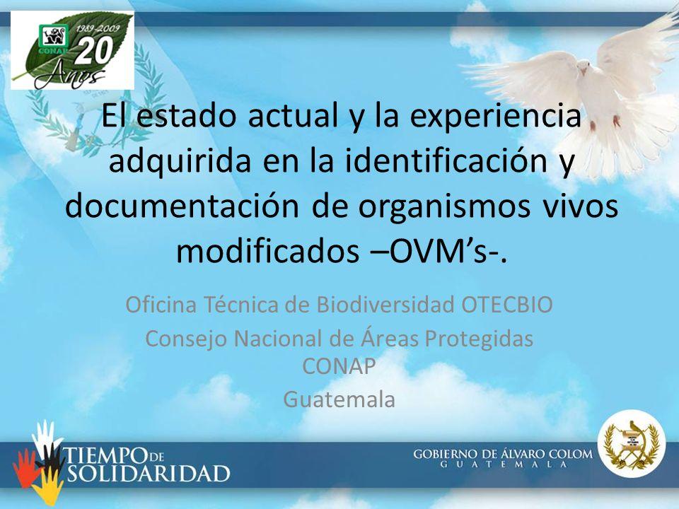 El estado actual y la experiencia adquirida en la identificación y documentación de organismos vivos modificados –OVM's-.