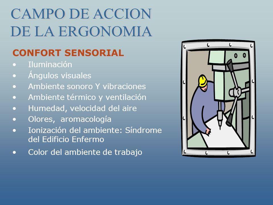 CAMPO DE ACCION DE LA ERGONOMIA CONFORT SENSORIAL Iluminación