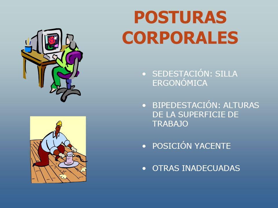 POSTURAS CORPORALES SEDESTACIÓN: SILLA ERGONÓMICA